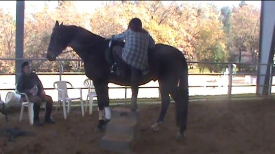 the Big Boy ... upp three steps, then tippy toe, then jump into the stirrup.